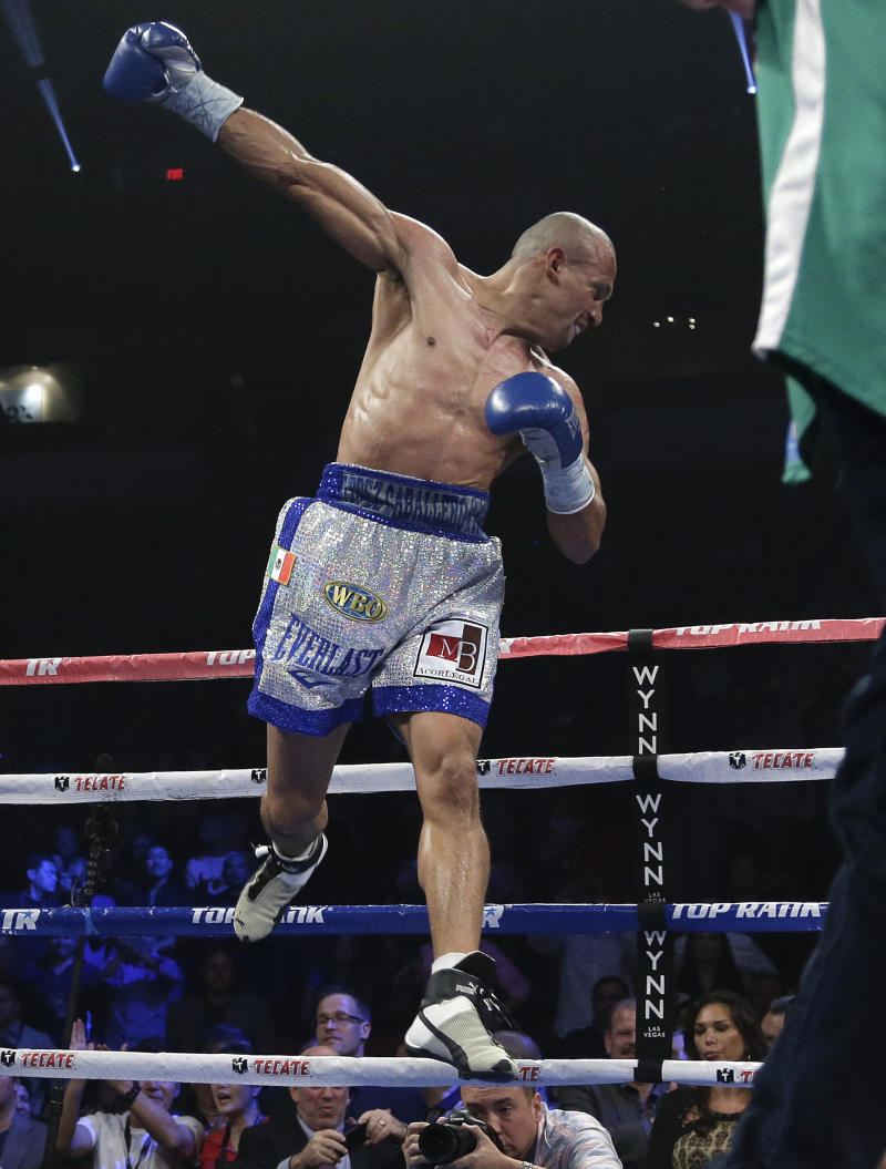 Gay boxer loses in title fight shot