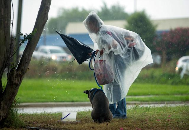 <p>A man and his dog pack up their belongings from the neutral ground on Poland Ave. as they take shelter from the first wave of rain to hit New Orleans as Tropical Storm Cindy heads toward Louisiana on Tuesday, June 20, 2017. (Photo: Chris Granger/NOLA.com The Times-Picayune via AP) </p>