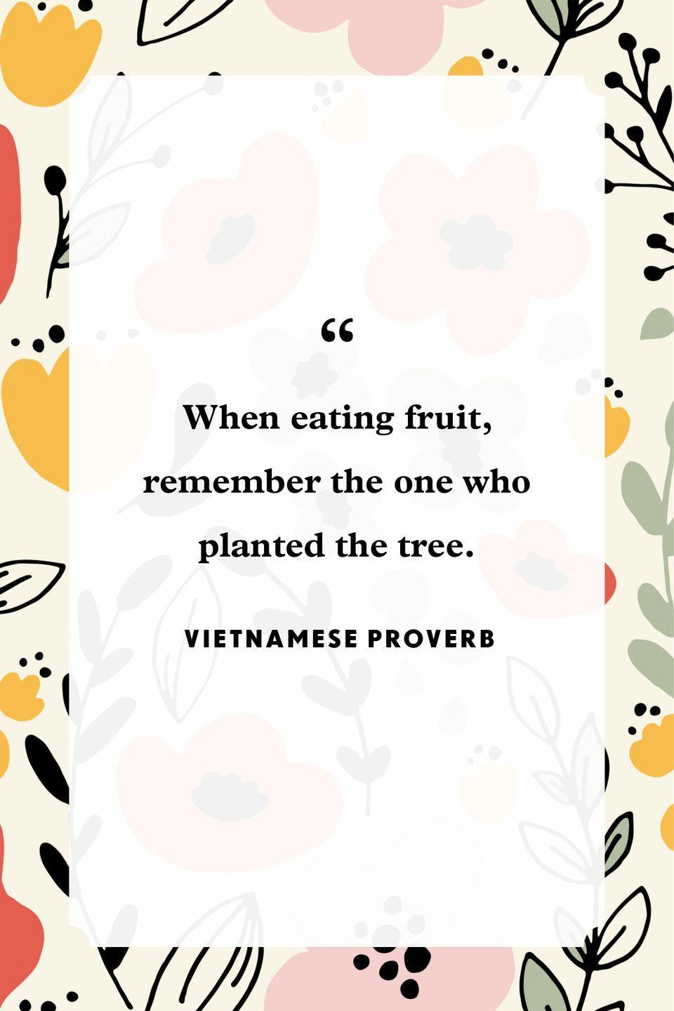 """<p>""""When eating fruit, remember the one who planted the tree.""""</p>"""
