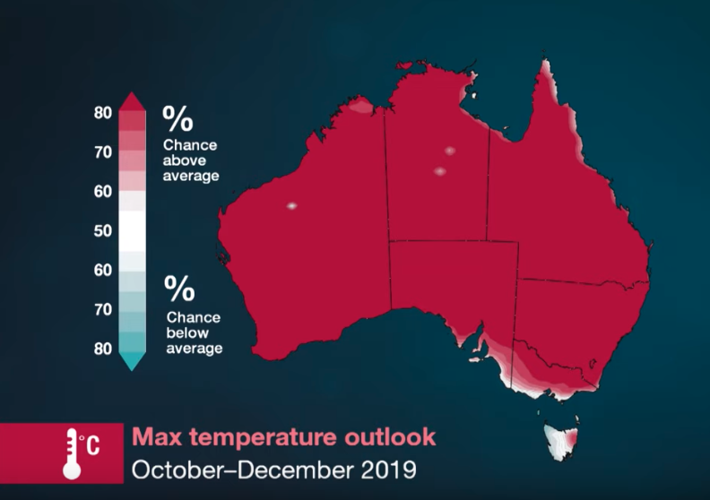 A Bureau of Meteorology weather map shows the maximum temperature outlook for the period of October to December this year. According to the map, most of Australia will have a more than 80 per cent chance of experiencing a maximum temperature that is above average for this period.