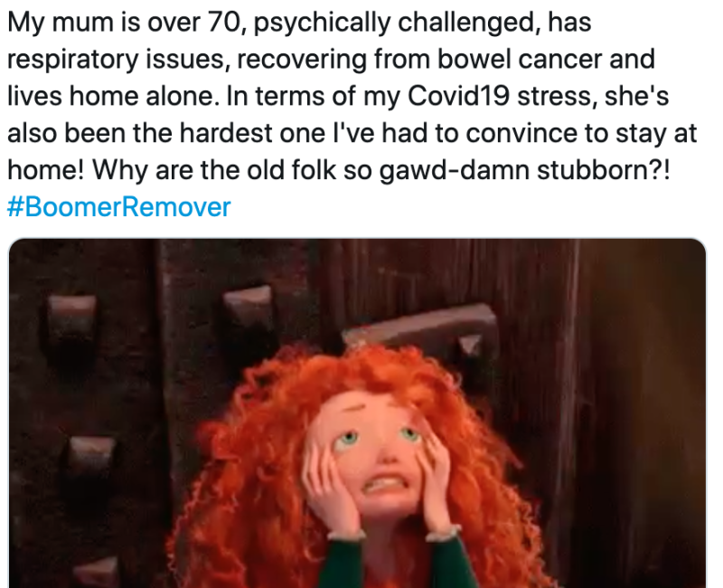 Boomer remover tweet with Brave gif used