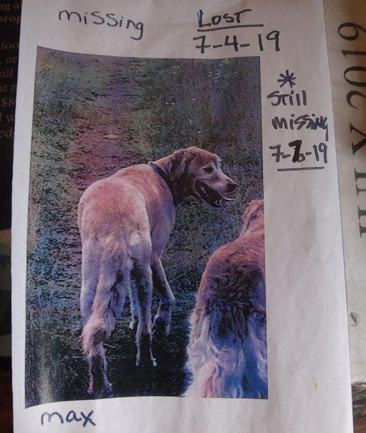 PHOTO: Hikers Kelly McDuffie and Danny Hartung found Max, a Golden Retriever who got lost 11 days prior. (Kelly McDuffie)