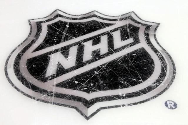 The NHL said Monday that 15 of more than 250 players who took part in small group workouts that began three weeks ago have tested positive for COVID-19, as have another 11 players in that span who did so outside of the training facilities tests (AFP Photo/BRUCE BENNETT)