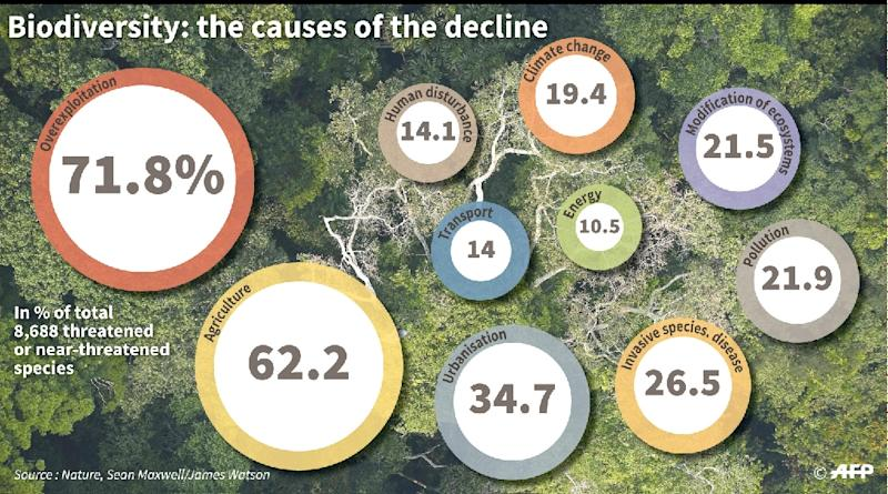 The main causes of biodiversity decline (AFP Photo/)