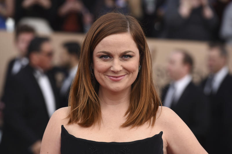 "FILE -  In this Jan. 30, 2016, file photo, Amy Poehler arrives at the 22nd annual Screen Actors Guild Awards at the Shrine Auditorium & Expo Hall on Saturday, Jan. 30, 2016, in Los Angeles. NBC announced on March 28, 2017, that Poehler is teaming up with her former ""Parks and Recreation"" co-star Nick Offerman for an for an NBC reality competition focused on craft making. (Photo by Richard Shotwell/Invision/AP, File)(Photo by Jordan Strauss/Invision/AP, File)"