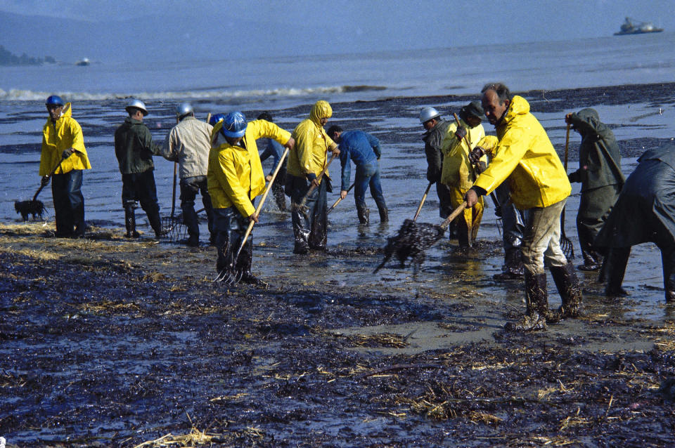 FILE- In this Feb. 6, 1969, file photo, state forestry conservation crews gather up oil-soaked straw on a beach in Santa Barbara, Calif. The oil spill more than a generation ago helped give rise to the modern environmental movement itself. (AP Photo/Wally Fong, File)
