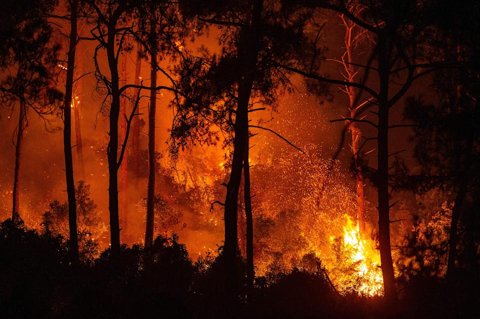 TOPSHOT - This photograph shows a forest burning as a massive wildfire engulfed a Mediterranean resort at the Marmaris district of Mugla, on August 1 2021. - At least three people were reported dead on July 29, 2021 and more than 100 injured as firefighters battled blazes engulfing a Mediterranean resort region on Turkey's southern coast. (Photo by Yasin AKGUL / AFP) (Photo by YASIN AKGUL/AFP via Getty Images)