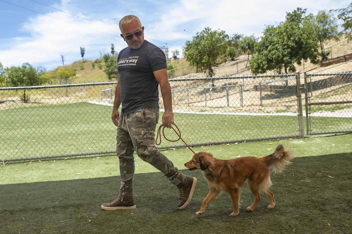 Cesar Millan shows the proper placement of the leash on his dog Sophia, with the loop placed at the top of the neck.
