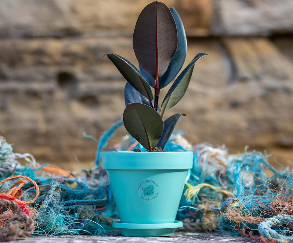 Winner: Ocean Plastic Pots won the first Sustainable Garden Product of the Year award today for its smart, durable design. It was praised by experts for serving as an important reminder of the need to look after our oceans