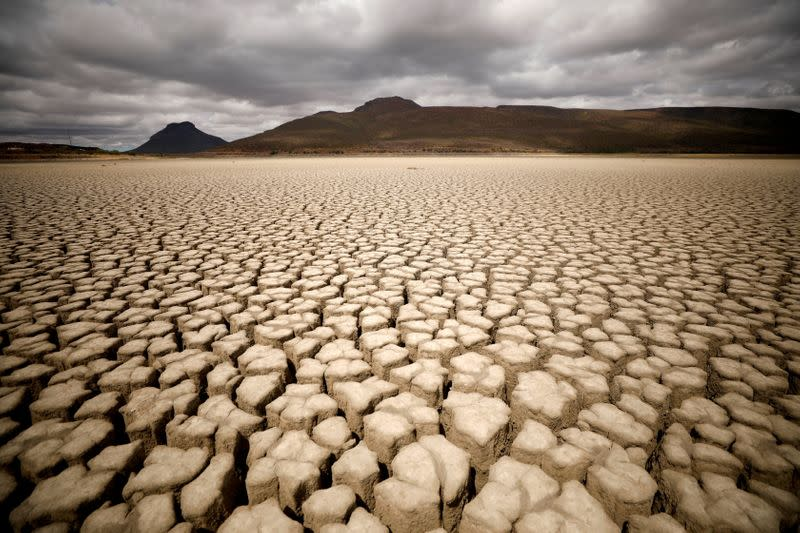 FILE PHOTO: Clouds gather but produce no rain as cracks are seen in the dried up municipal dam in drought-stricken Graaff-Reinet