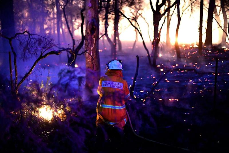 A firefighter conducts back burning measures to secure residential areas from encroaching bushfires at the Mangrove Mountain area on December 7. Source: AFP