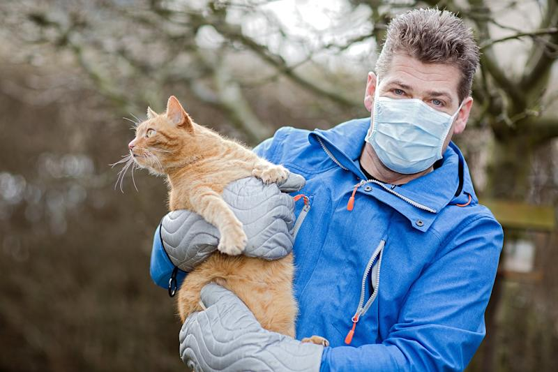 Cat Allergies No More: Feline Vaccine Developed by Swiss Scientists Could Stop Cat Allergies