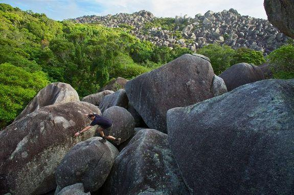 Earlier this year, scientists set out to explore a place where few humans have tread: the rain forest of Australia's Cape Melville Range. Surrounded by massive boulders, the mountain range has been largely cut off for millions of years and is h