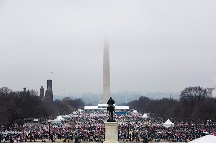 <p>Protesters crowd the National Mall in Washington, DC, during the Womens March on January 21, 2017. (ZACH GIBSON/AFP/Getty Images) </p>