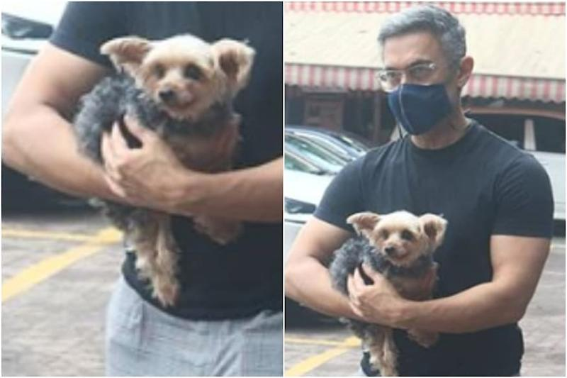 Aamir Khan Flaunts Lockdown Greys as He Steps Out with Furry Friend