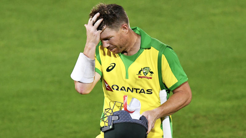 David Warner rubbing his hair and looking frustrated after being dismissed.