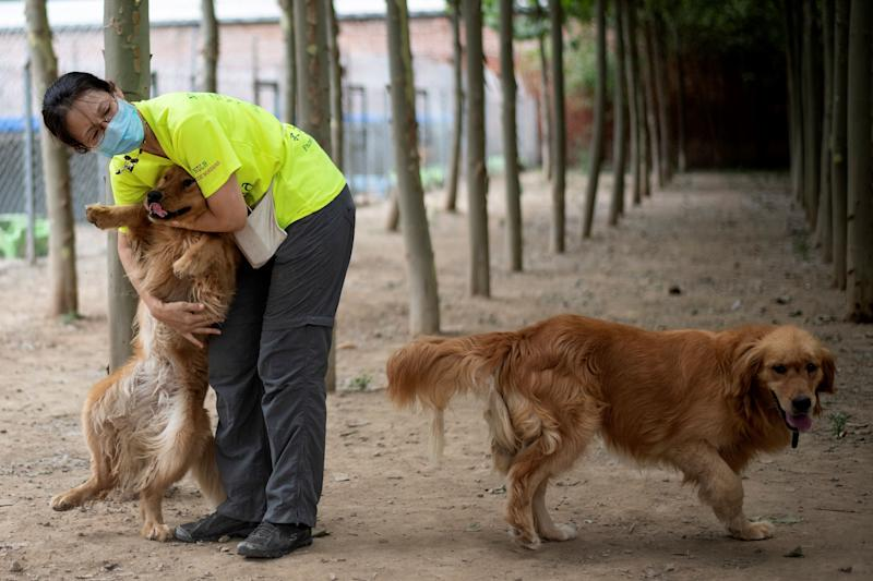 "Volunteer ""Ling"" hugging one of the rescued dogs at a shelter on the outskirts of Beijing. Source: AFP"