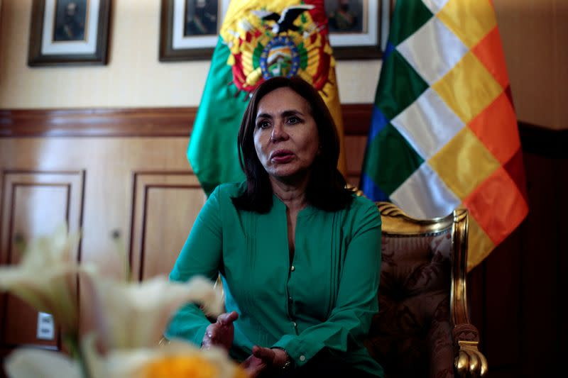 Bolivia is not a Mexican colony, acting foreign minister Longaric tells El Pais