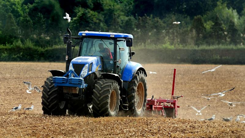 We cannot feed our nation without non-UK labour, says NFU Scotland