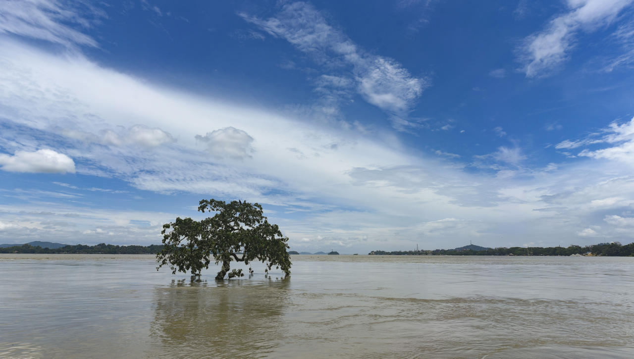 A tree is seen submerged in the swollen Brahmaputra river, following heavy monsoon rain, in Guwahati, Assam, India on July 15, 2020. (Photo by David Talukdar/NurPhoto via Getty Images)