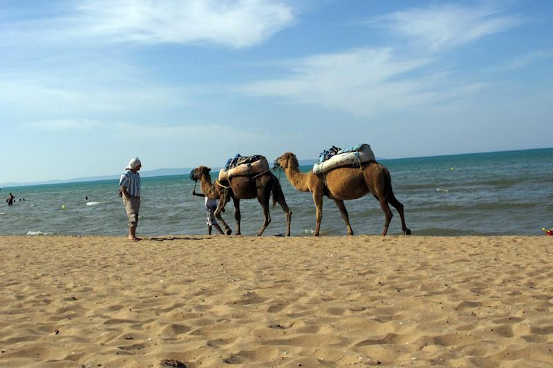 A tourist looks on as a man leads camels down a beach offering rides near the Tunisian capital of Tunis on July 1, 2012,  as tourists slowly return to this once popular destination.  After a disastrous year in which revolution, social upheaval and strikes scared away tourists and crippled industrial production, the economy is slowly climbing out of a deep recession that saw it shrink by 2 percent in 2011. (AP Photo/Paul Schemm)