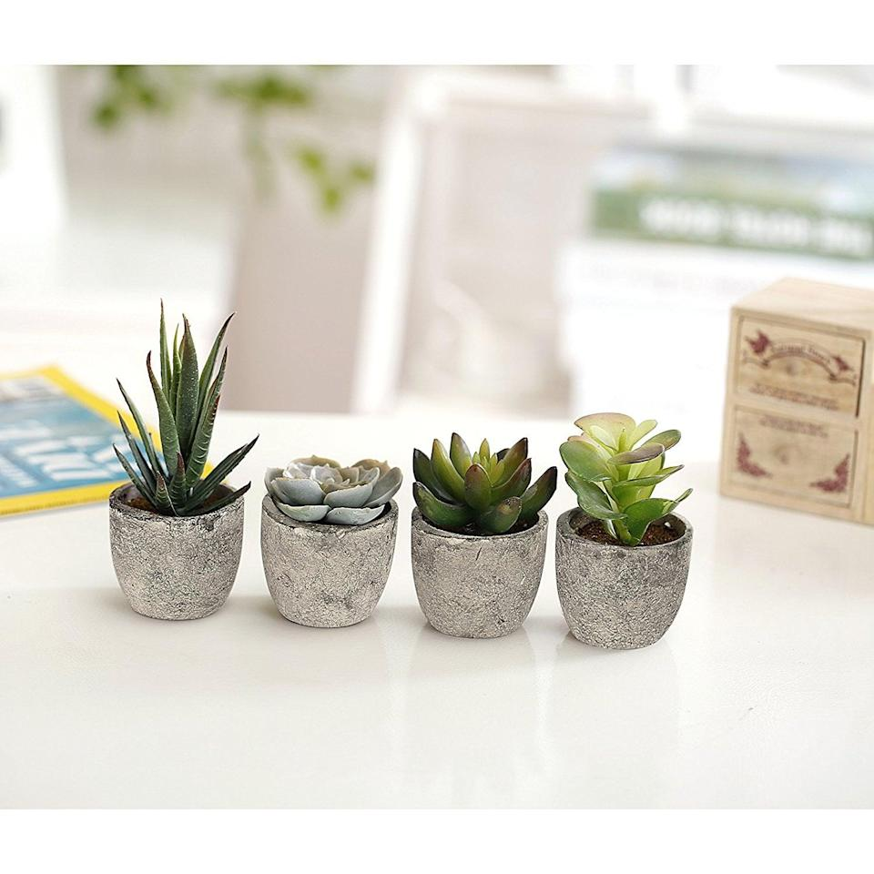 <p>Make your tiny apartment bathroom feel like a spa oasis by placing these cute <span>Assorted Decorative Artificial Succulent Plants</span> ($16) around your space.</p>