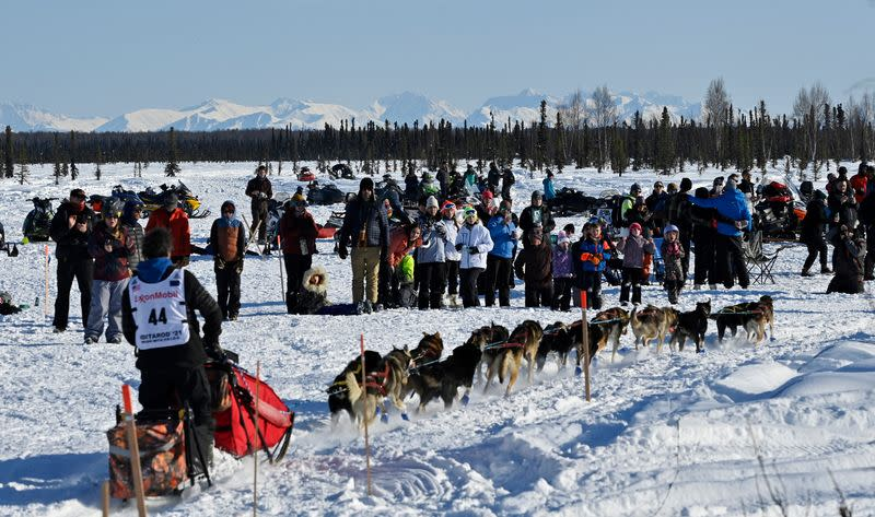 Fans watch musher Jessie Holmes leave the Iditarod Sled Dog Race starting area