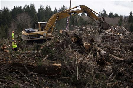 Rescue workers continue to search for human remains in a debris field left by a mudslide in Oso, Washington, April 3, 2014. REUTERS/Max Whittaker