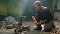 """<p>It was no <em>Jurassic Park</em>, let's face it, but that didn't stop 2015's <em>Jurassic World</em> from becoming one of the highest-grossing movies of all time. Expectations are dino-sized, then, for this follow-up that has Chris Pratt and Bryce Dallas Howard on a rescue mission, and franchise torchbearer Jeff Goldblum reprising his beloved role as Dr. Ian Malcolm. 