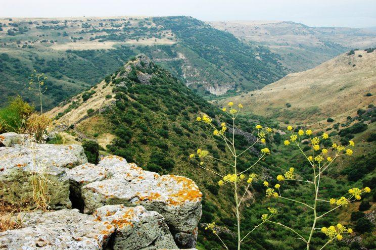 Looking west in the Golan Heights (credit: Israeli Ministry of Tourism)
