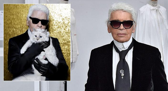 What will become of Karl Lagerfeld's beloved cat Choupette? [Photo: Instagram/@choupettesdiary/Getty]