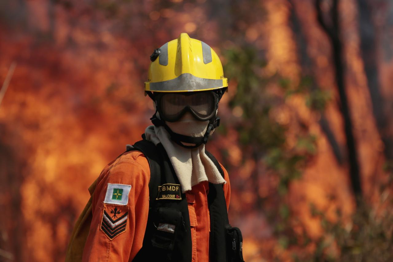 A firefighter looks on during attempts to extinguish flames of a forest fire in the environmental conservation area near Jaburu Palace, the official residence of vice-president, in Brasilia September 17, 2013. According to the Fire Department, the fire was caused by low humidity and dry weather. REUTERS / Ueslei Marcelino (BRAZIL - Tags: POLITICS DISASTER TPX IMAGES OF THE DAY)