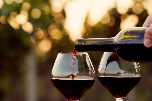 Growth of organic wine industry driven largely by consumers in Europe: report