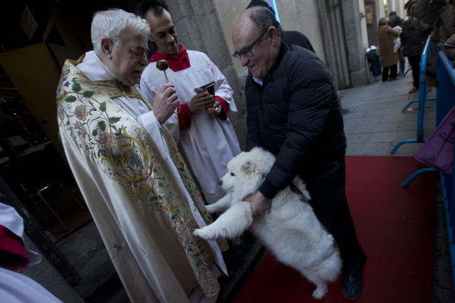 <p>A priest anoints a dog at the San Anton church during the feast of Saint Anthony, Spain's patron saint of animals, in Madrid, Wednesday, Jan. 17, 2018. (Photo: Paul White/AP) </p>