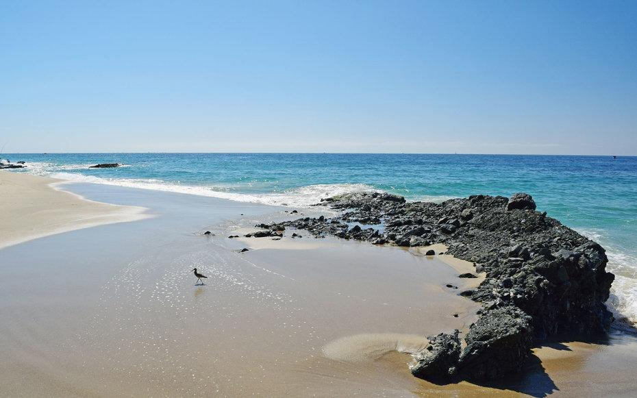 The 15 best beaches in california for Vacation beaches in california