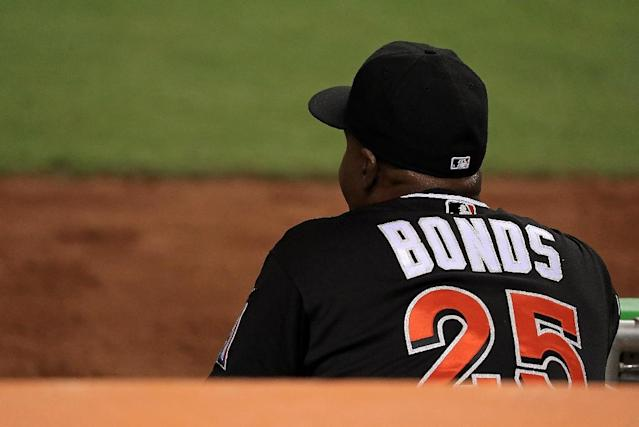 Barry Bonds, pictured in 2016, is Major League Baseball's career home run king with 762 over 22 campaigns, including a single-season record 73 in 2001 (AFP Photo/Mike Ehrmann)