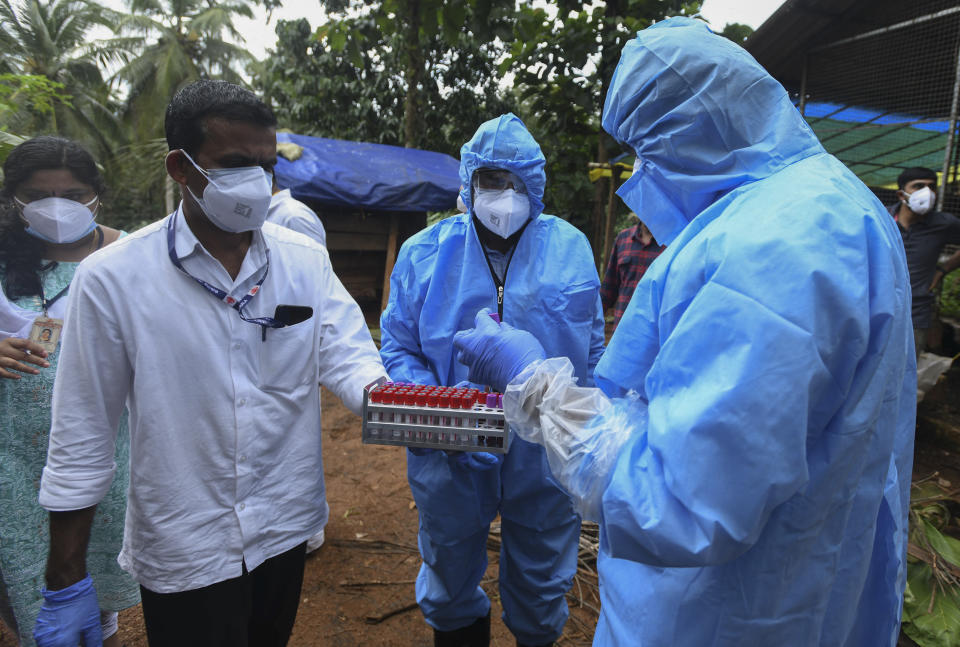 Health workers collect blood samples from goats in the neighborhood for testing after a 12-year-old boy died of the Nipah virus in Kozhikode, Kerala state, India, Tuesday, Sept.7, 2021. The southern Indian state is quickly ramping up efforts to stop a potential outbreak of the deadly Nipah virus, even as it continues to battle the highest number of coronavirus cases in the country. (AP Photo/Shijith. K)