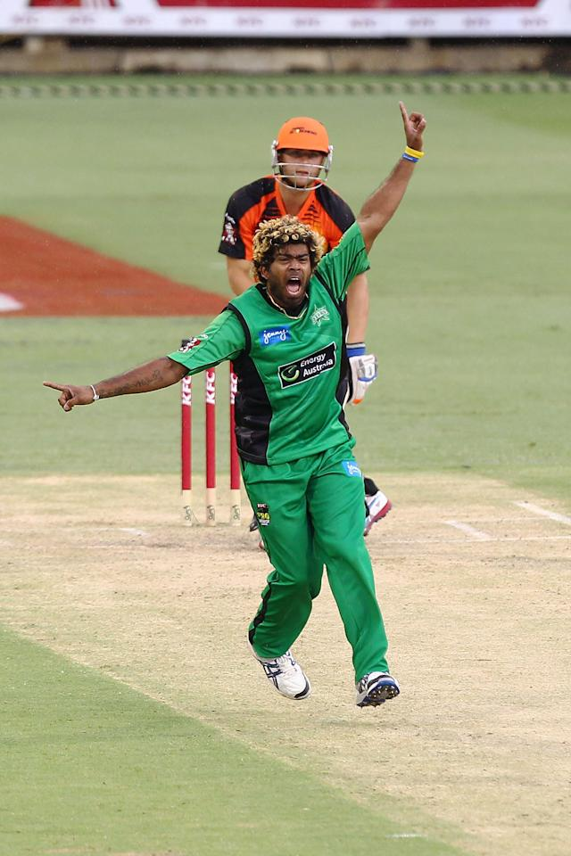 PERTH, AUSTRALIA - DECEMBER 12: Lasith Malinga of the Stars celebrates taking the wicket of Tom Triffitt of the Scorchers during the Big Bash League match between the Perth Scorchers and the Melbourne Stars at WACA on December 12, 2012 in Perth, Australia.  (Photo by Will Russell/Getty Images)
