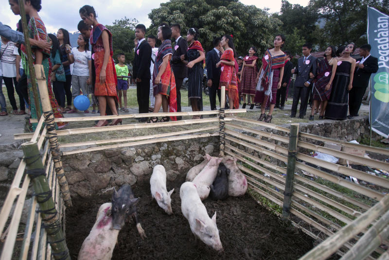 In this Friday, Oct. 25, 2019, photo, participants prepare to perform during a fashion show held as a part of Toba Pig and Pork Festival, in Muara, North Sumatra, Indonesia. Christian residents in Muslim-majority Indonesia's remote Lake Toba region have launched a new festival celebrating pigs that they say is a response to efforts to promote halal tourism in the area. The festival features competitions in barbecuing, pig calling and pig catching as well as live music and other entertainment that organizers say are parts of the culture of the community that lives in the area. (AP Photo/Binsar Bakkara)