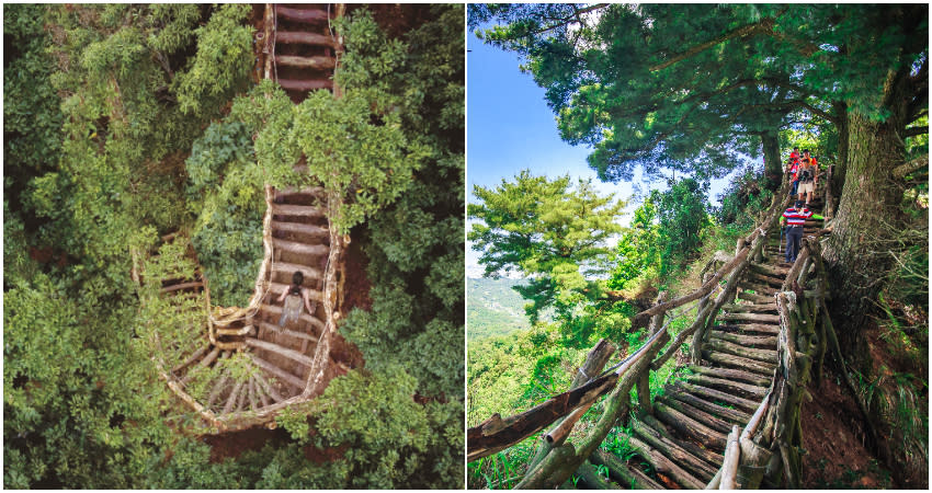 <p>The Dakeng Trails is a perfect way for you to get lost in the woods and relax during this short weekend. (Photo courtesy of Taipei Walker)</p>