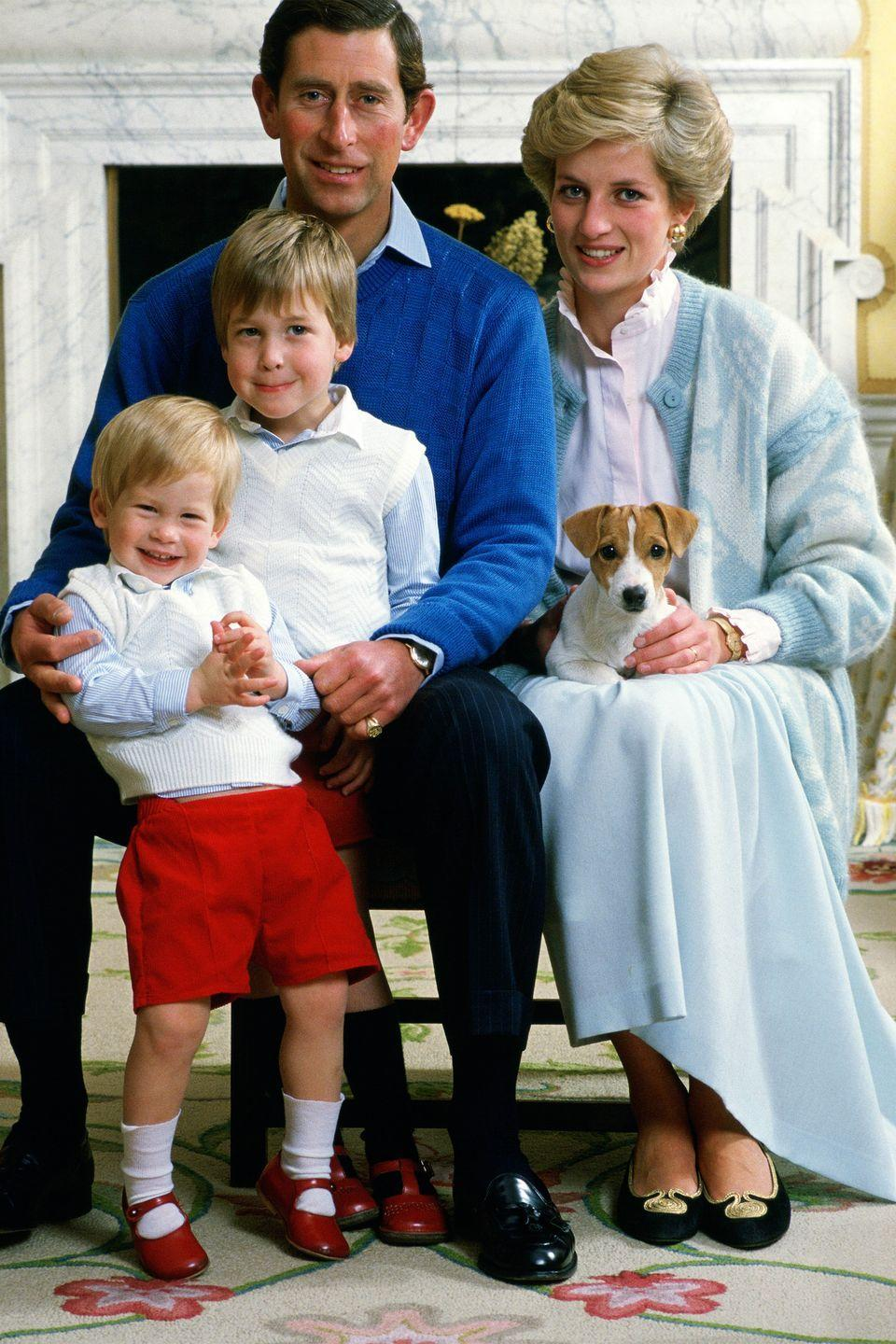 <p>In an official royal portrait, Diana, Charles, William, and Harry are photographed with their dog at Kensington Palace. </p>