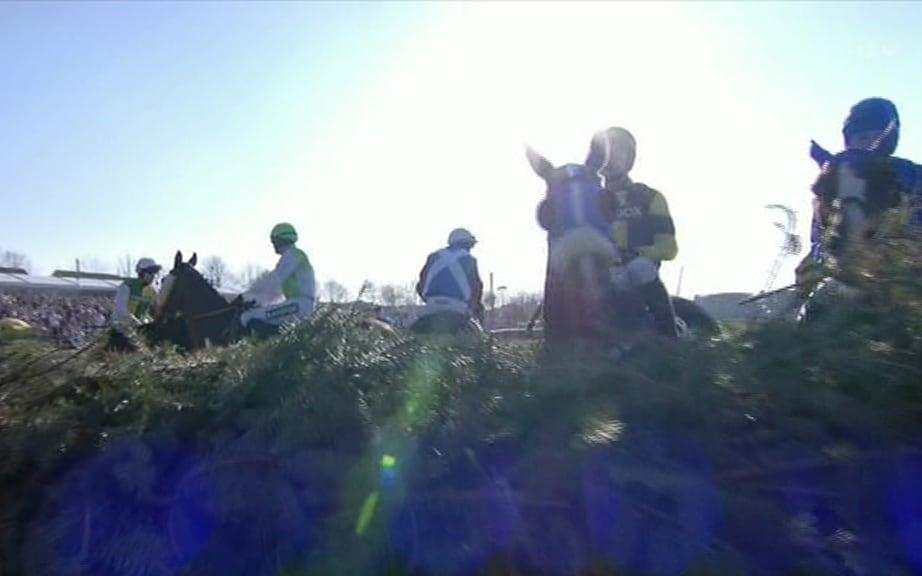 horses at fence - Credit: ITV
