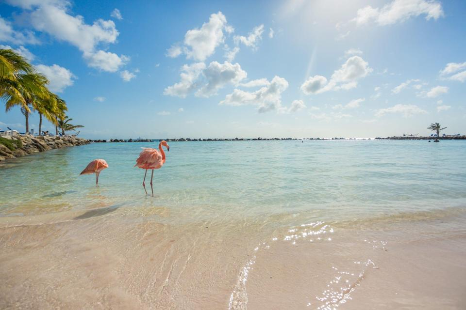Visitors to Aruba need a negative coronavirus test and must purchase health insurance to cover the cost of any medical care while in the country.
