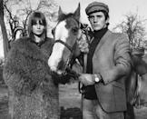 <p>A young Terence Stamp wore a black turtleneck and a matching houndstooth sport coat and newsboy cap with his Christmas present in 1965—a horse named Modesty, given to him by his girlfriend, Jean Shrimpton. </p>