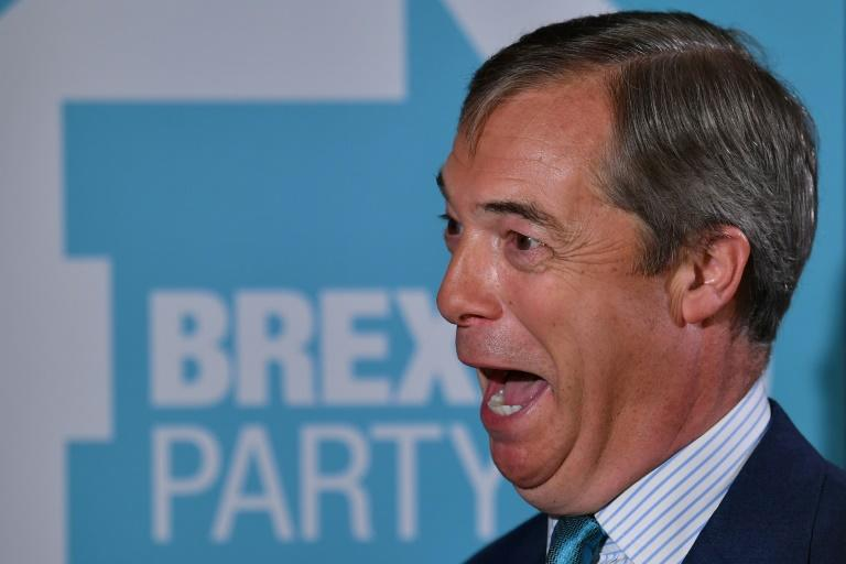 Brexit Party leader Nigel Farage says he won't stand as a candidate in next month's general election (AFP Photo/Ben STANSALL)