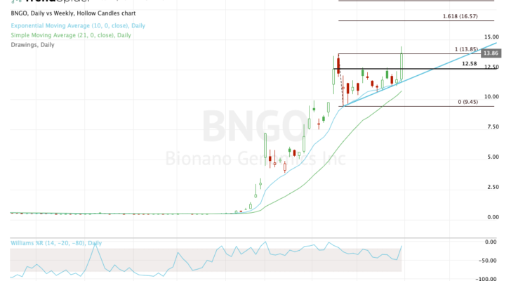 the best stock trades for BNGO
