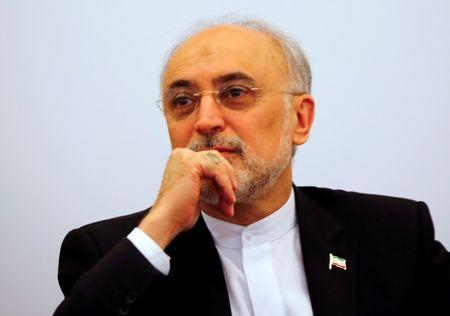 FILE PHOTO: Head of the Iranian Atomic Energy Organization Ali Akbar Salehi attends a lecture in Vienna