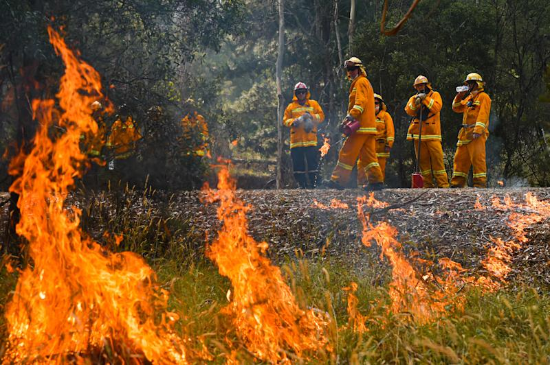 CFA strike teams perform controlled burning west of Corryong, Victoria.