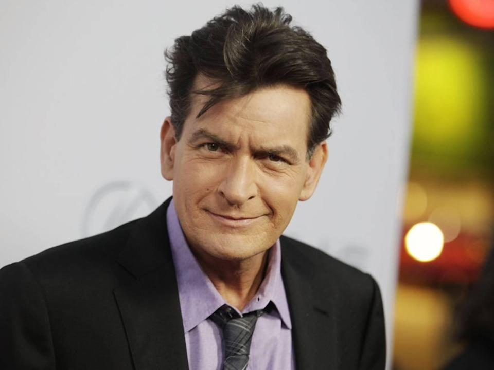 Charlie Sheen watched gay porn claims Denise Richards