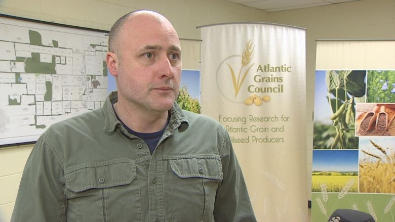 P.E.I. grain growers looking at the past to plant for the future